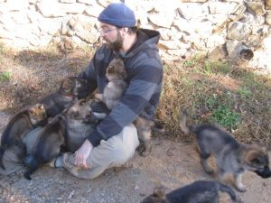 about asheville dog company